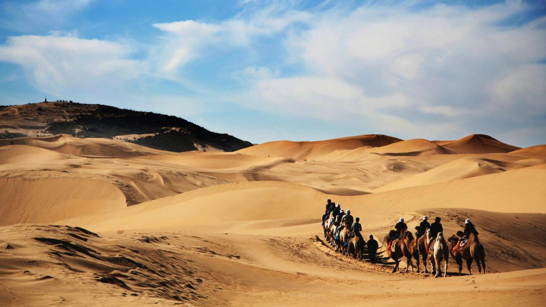 Participants travel through the Gobi Desert by camel to reach the Gobi Mirage Camp in Mongolia.